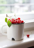 Ripe red cherries Stock Photos