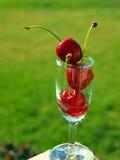 Ripe Red Cherries Stock Photos