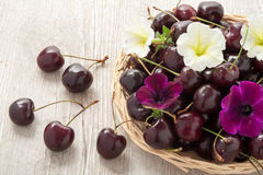 Ripe red cherries in a basket Royalty Free Stock Photos