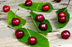 Ripe red cherries with green leaves Royalty Free Stock Image