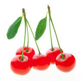 Ripe red cherries isolated on white background Stock Photos
