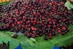 Ripe red cherries Stock Image