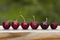 Ripe red cherries with stems lined up in a row after harvest. Six sweet and dark cherry fruits sitting on a wooden table outside ready to be eaten Stock Images