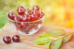 Ripe red cherries in a transparent bowl in sunlight outdoors closeup Stock Images