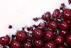 Ripe red cherries and white sugar Royalty Free Stock Photo