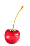 Ripe red cherry berries Royalty Free Stock Photos