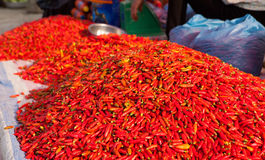 Ripe red chili peppers Stock Image