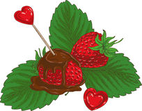 Ripe Red Chocolate Covered Strawberry. Ripe Red Chocolate Covered Strawberries with Red Hearts on White Background Royalty Free Stock Photo