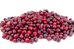 Ripe red cranberries on a white background royalty free stock image