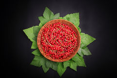 Ripe red currant in a basket on a black background. Juicy bright red berries with green leaves. Fresh tasteful currant. Stock Image