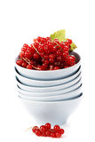 Ripe red currant berries Royalty Free Stock Photo
