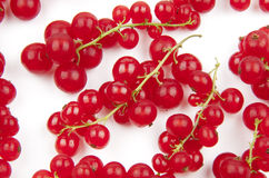Ripe red currants Stock Photos