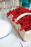 Ripe red currants in basket. Ripe currants in a basket, Kitchen utensils and ingredients for manufacturing of currant syrup Stock Photography