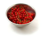 Ripe Red currants Royalty Free Stock Photo