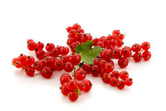 Ripe red currants isolated Stock Photo
