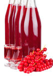 Ripe red currants and liqueur Stock Photography