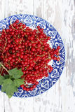 Ripe red currants, top view Stock Images