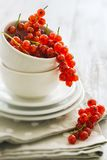 Ripe red currants. On whie plates Royalty Free Stock Image