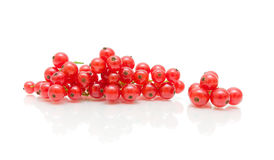 Bunches of juicy red currant on white background Stock Images