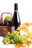 Ripe red and dark grapes and wine in basket Stock Image