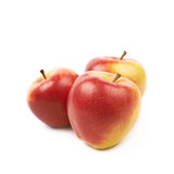 Ripe red and golden jonagold apple Royalty Free Stock Photography