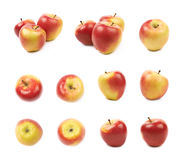 Ripe red and golden jonagold apple set Royalty Free Stock Images