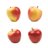 Ripe red and golden jonagold apple Royalty Free Stock Photo