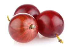 Ripe red gooseberry. On white background royalty free stock photography