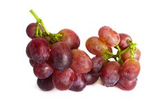 Ripe red grape with bunch isolated on white background. studio shot isolated. Royalty Free Stock Image