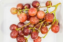 Ripe red grape Stock Photography