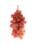 Ripe red grape on white Royalty Free Stock Image