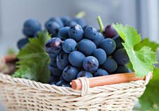 Ripe red grapes Stock Image