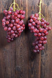 Ripe red grapes Royalty Free Stock Image