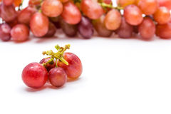 Ripe red grapes  on a white background Royalty Free Stock Photos