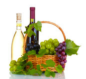 Ripe red grapes and wine in basket Royalty Free Stock Image
