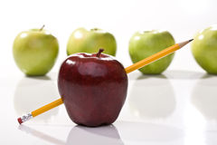 Ripe red and green apples. With pencil Stock Images