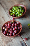 Ripe red and green gooseberry in bowls Stock Image