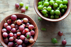Ripe red and green gooseberry in bowls Royalty Free Stock Image