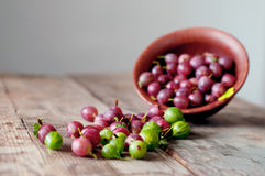 Ripe red and green gooseberry in bowls Stock Images
