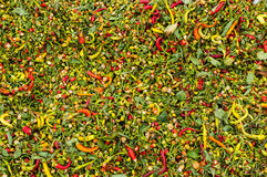Ripe red hot chili peppers Stock Photo