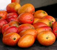 Ripe Red Mangoes for Sale Royalty Free Stock Images