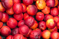 Ripe red nectarines for sale at the market Stock Photography