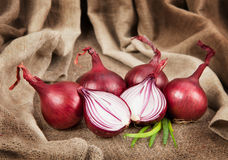 Ripe red onion on sackcloth Stock Image