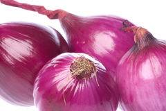 Ripe red onions Stock Photos