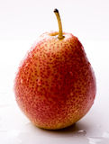 Ripe red pear with water drops Royalty Free Stock Photo
