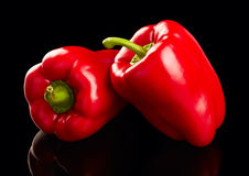 Ripe red peppers Stock Photography