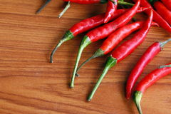 Ripe red peppers Stock Images