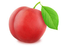 Ripe red plum with green leaf. With clipping path Royalty Free Stock Photography