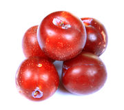 Ripe red plums Royalty Free Stock Photography