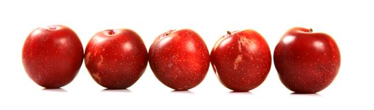 Ripe red plums Stock Image